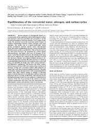 Equilibration of the terrestrial water, nitrogen, and carbon cycles