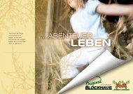Scandinavian Blockhaus Katalog