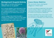 'Mae pobl yr henfyd wedi bod yn - The National Botanic Garden of ...