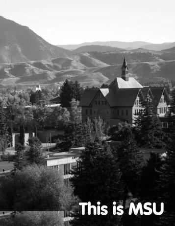This is MSU - Montana State University