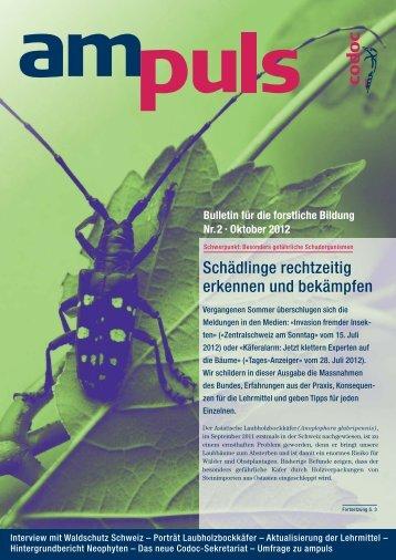 Nr. 2 - 10/2012 - Codoc