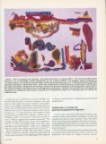 Visual Intelligence - Experimental Television Center - Page 5
