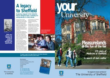 Pleasurelands - University of Sheffield