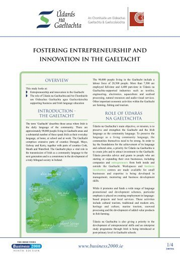 fostering entrepreneurship and innovation in the ... - Business 2000