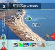Management Plan for the Delaware Bay Beaches