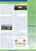 Flusslandschaft aktuell_Ausgabe 6 - in der Flusslandschaft Eider ... - Seite 3