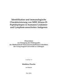 Identifikation und immunologische Charakterisierung von MHC ...