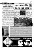 Ottobre 03.qxd - La Rocca - Page 5