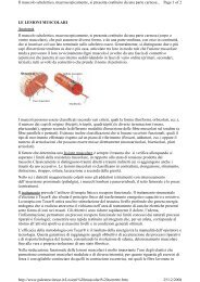 lesioni muscolari - Trattamenti fisioterapici
