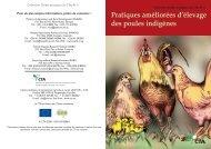 Pratiques améliorées d'élevage des poules indigènes.pdf - TECA