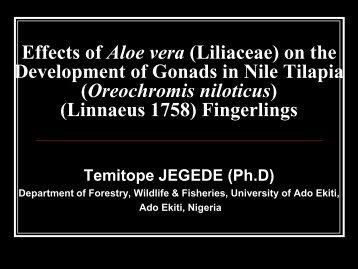 Effects Of Aloe Vera (Liliaceae)