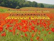 Reproducción de las Angiospermas - ies