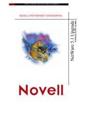NetWare 5.1 Upgrade Consulting Guide - ITwelzel.biz