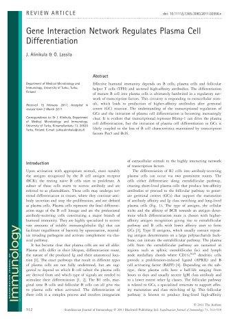 Gene Interaction Network Regulates Plasma Cell Differentiation