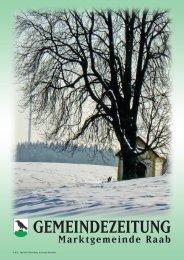 Frohe Weihnachten und alles Gute für das Jahr 2009 wünscht Ihnen