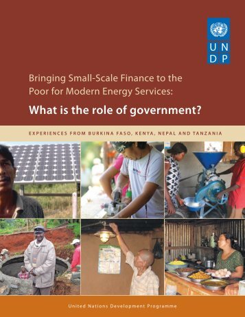 What is the role of government? - United Nations Development ...
