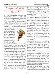 Strapaze 2001 Seite 31 - Staatliche Berufsschule Neu-Ulm