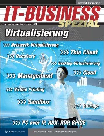 Virtualisierung - IT-Business