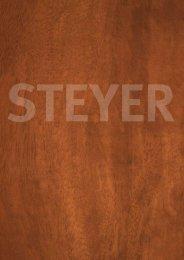 Untitled - Steyer