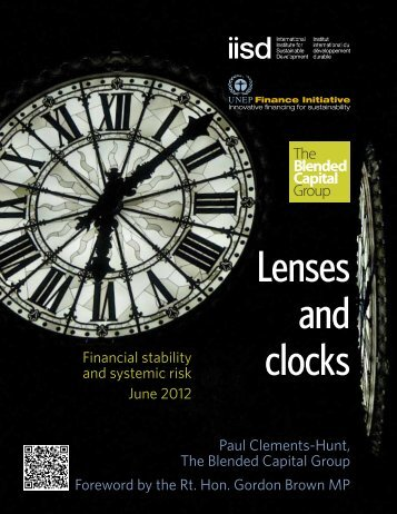 Lenses and Clocks: Financial stability and systemic risks