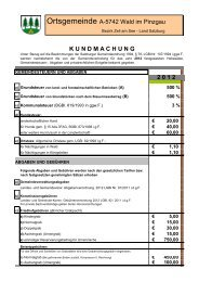 2 1 2 - Wald im Pinzgau