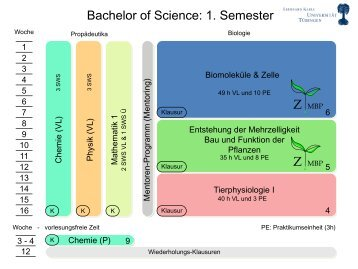 Bachelor of Science: 1. Semester