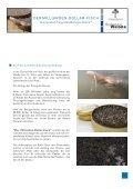 DER MILLIARDEN-DOLLAR-FISCH Die letzten ... - ScienceVision - Seite 2