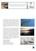 DER MILLIARDEN-DOLLAR-FISCH Die letzten ... - ScienceVision - Seite 5