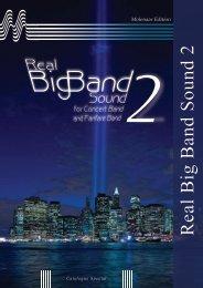 R eal B ig B and Sound 2 - Molenaar Edition