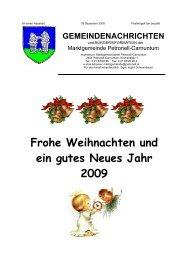 Frohe Weihnachten und ein gutes Neues Jahr 2009