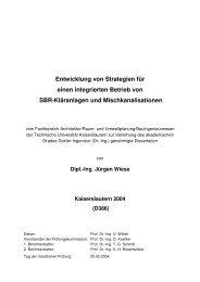 Entwicklung von Strategien für einen integrierten Betrieb von SBR ...