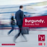 Burgundy Development - Bourgogne Développement