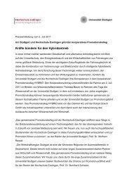 Promotionskolleg Hybrid (pdf) - FKFS