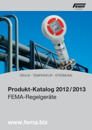 Produkt-Katalog 2012 / 2013 www.fema.biz - FEMA Honeywell