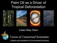 Palm Oil as a Driver of Tropical Deforestation - clients.squareeye.com