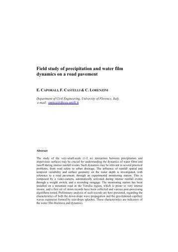 Field study of precipitation and water film ... - idrologia@polito
