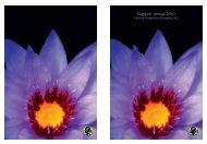 Rapport annuel 2010  - Fleurop-Interflora