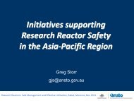 Initiatives Supporting Research Reactor Safety in the Asia - Nuclear ...