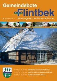 Ausgabe 6/09 Teil 1 - Gemeinde Flintbek