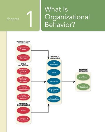nature and scope of organisational behaviour pdf