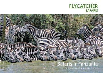 Safaris in Tanzania - Flycatcher Safaris