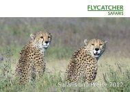Safaris und Preise 2012 - Flycatcher Safaris
