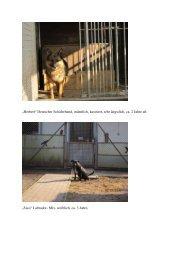 Tierschutzve Tierschutzverein Schmalkalden Schmalkalden