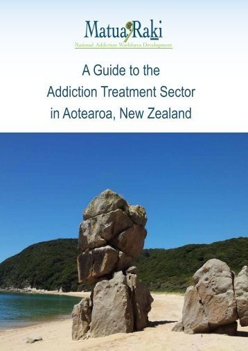 A Guide to the Addiction Treatment Sector - Stonefish Web and ...