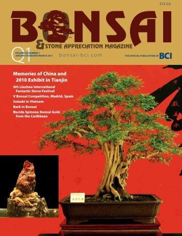 Bonsai & Stone Appreciation Magazine - Bonsai Clubs International