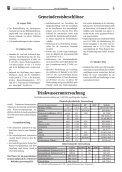 Neumarkt - Gemeinde Neumarkt in der Steiermark - Seite 5