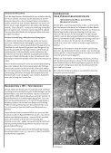 Woche 31 - Marktgemeinde Rankweil - Seite 7