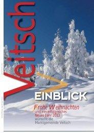 Veitsch Einblick 11-12 Web1.pdf
