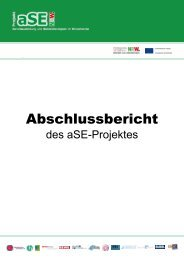 Abschlussbericht (pdf) - Zur Projekt aSE NRW