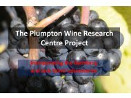 Download brochure (pdf) - Plumpton College